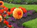 17 Kew Gardens 006