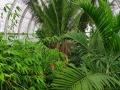 17 Kew Gardens 008