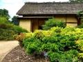 17 Kew Gardens 036