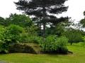 17 Kew Gardens 076